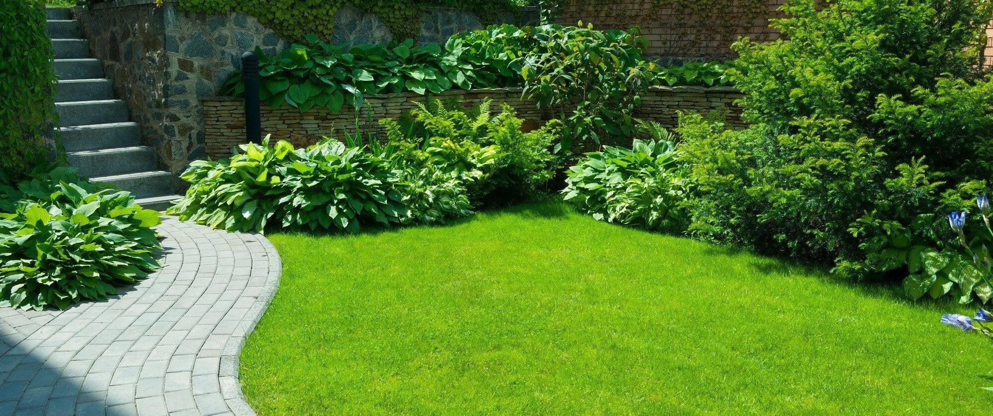 Öntözéstechnika és Kertészet